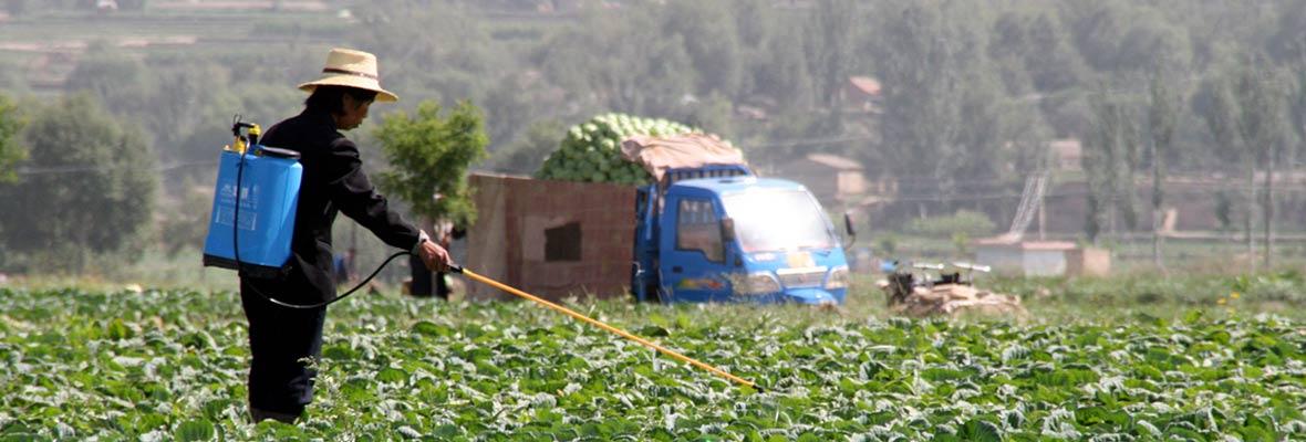 Pesticide spray
