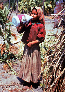 Girl drinking from pesticide bottle